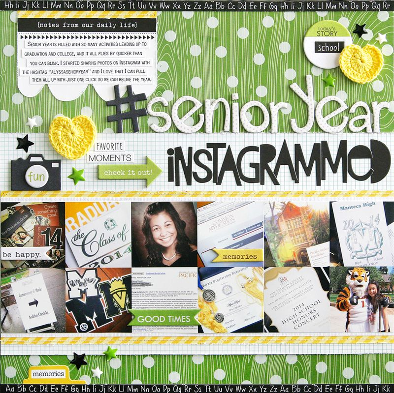 Step-By-Step Monthly Project Sheet: Clear Cuts & Instagram Photos