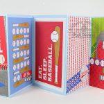Home Run Collection: Accordian Mini Album by Piali
